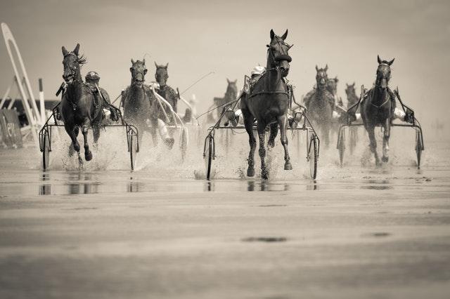 Spel på hästar - Är det värt det?